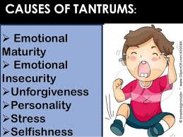 Tantrums are not just common in children, but a symptom of adult spoiled brats
