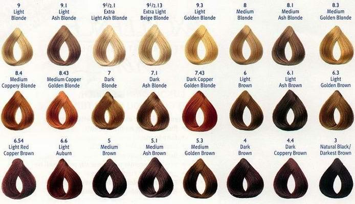 Auburn Hair Color Chart 27366 Most Por Red Shades