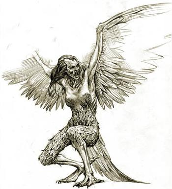 harpy-1